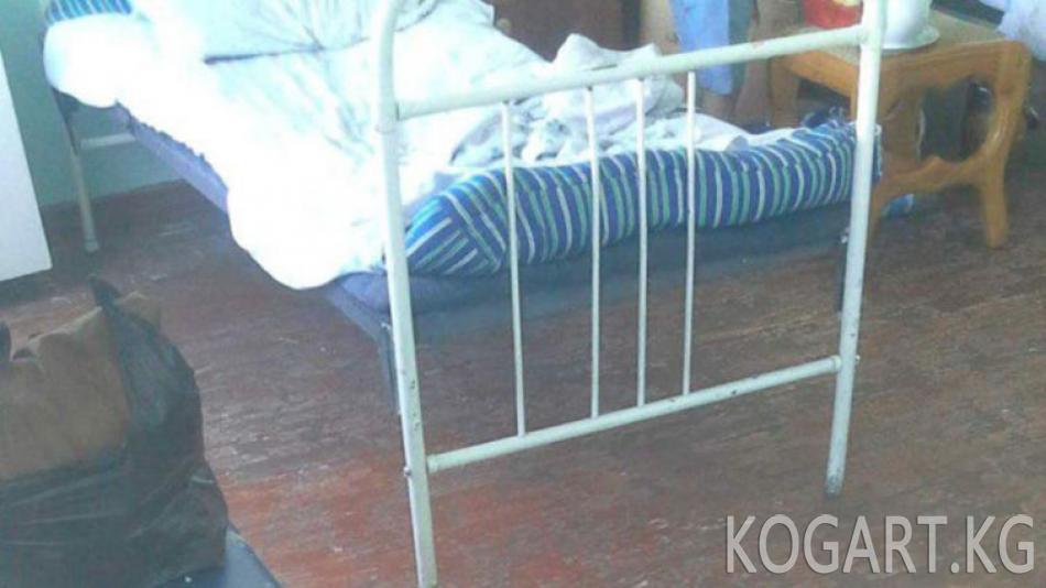 Өзбекстанда кененин уусунан эки киши каза болду