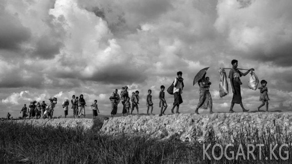 Мьянма бийлиги рохинжаларды мекенине кайтара баштады