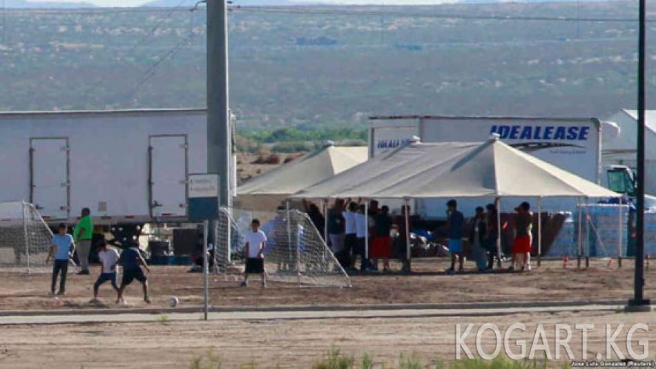 Трамп: мыйзамсыз мигранттарды сотсуз эле депортациялоо керек