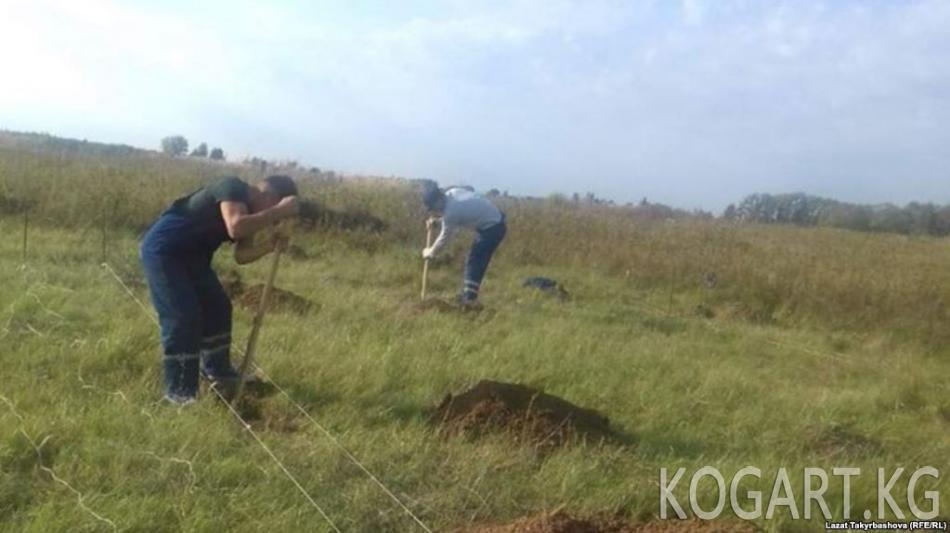 Орусия ТИМи Тулада кыргыз айылын курууга тыюу салууну текшерет