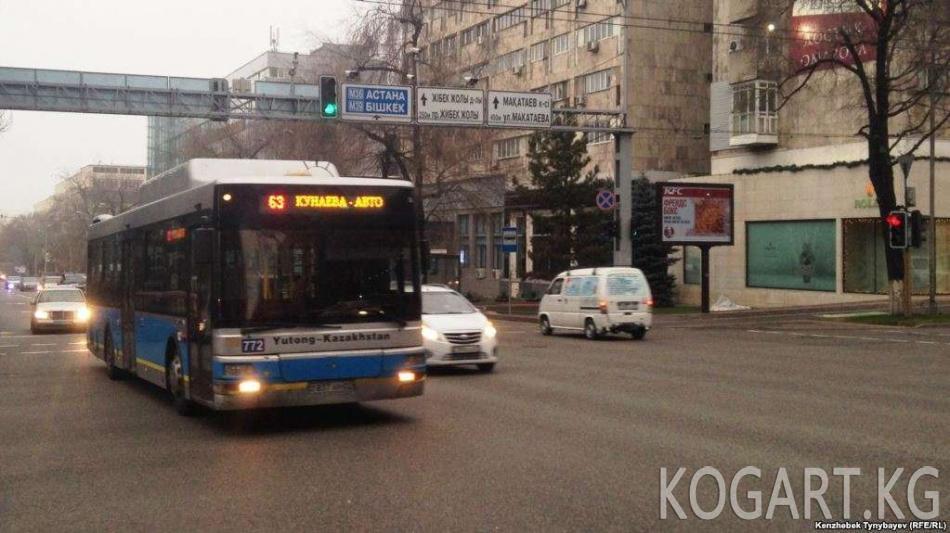 Алматыда автобустар кагылышып, 18 киши жабыр тартты