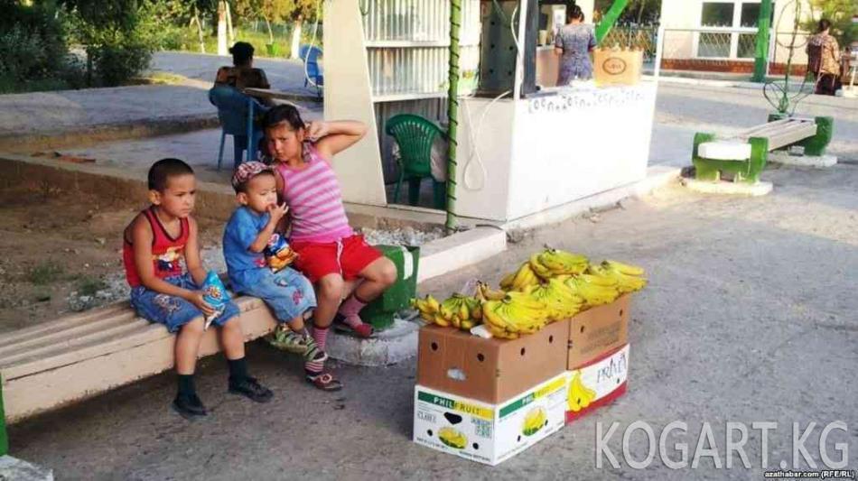 Түркмөнстан банан түшүмүн жыйноого даярданууда