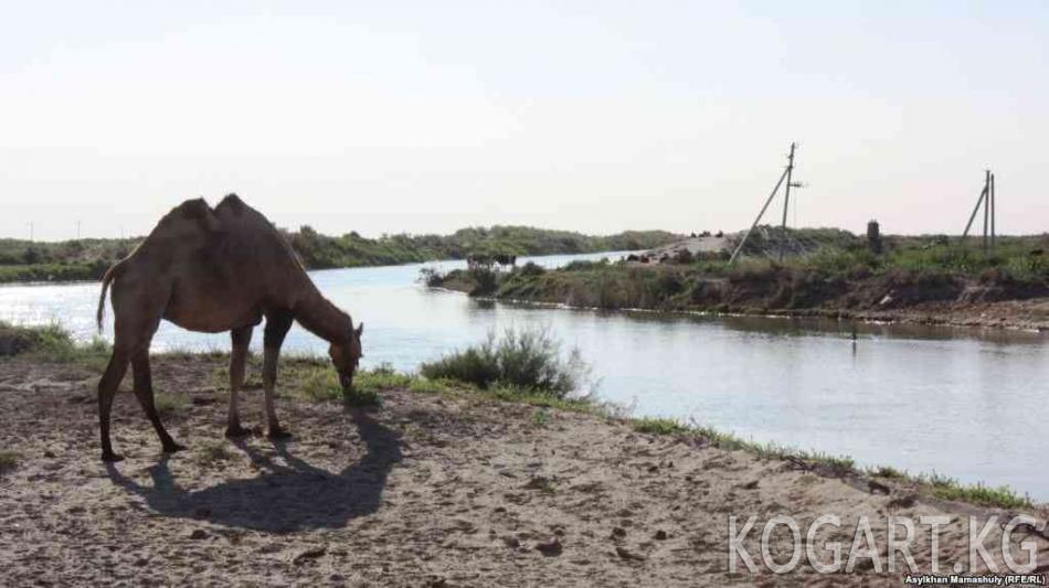 Кыргызстан аймакты суу менен камсыздаганы үчүн компенсация алууга...