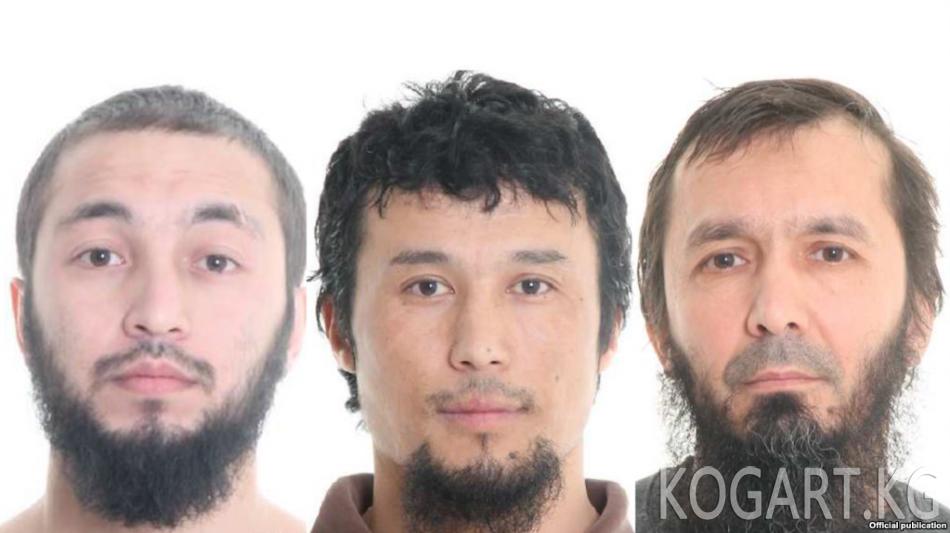 Швеция: терактты пландагандардын арасында кыргызстандык бар