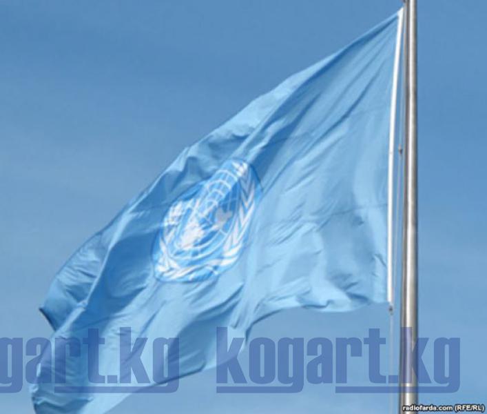 БУУ Кыргызстандагы программаларынын аткарылышы менен таанышат