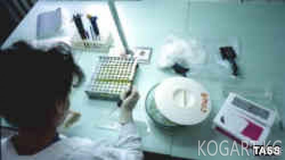 Өзбекстан ВИЧ-инфекциясы көп тараган өлкөлөрдүн катарына кирди