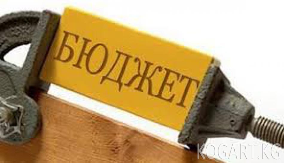 """Абида Кочкорова: """"Бюджетке 259, 3 миң сом кайтарылды"""""""