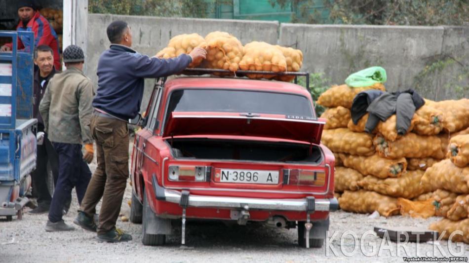 Өзбекстан Кыргызстандан картөшкө сатып ала баштады