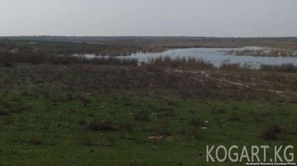 Казакстандыктар Өзбекстан менен жер алмашууга каршы болуп жатышат