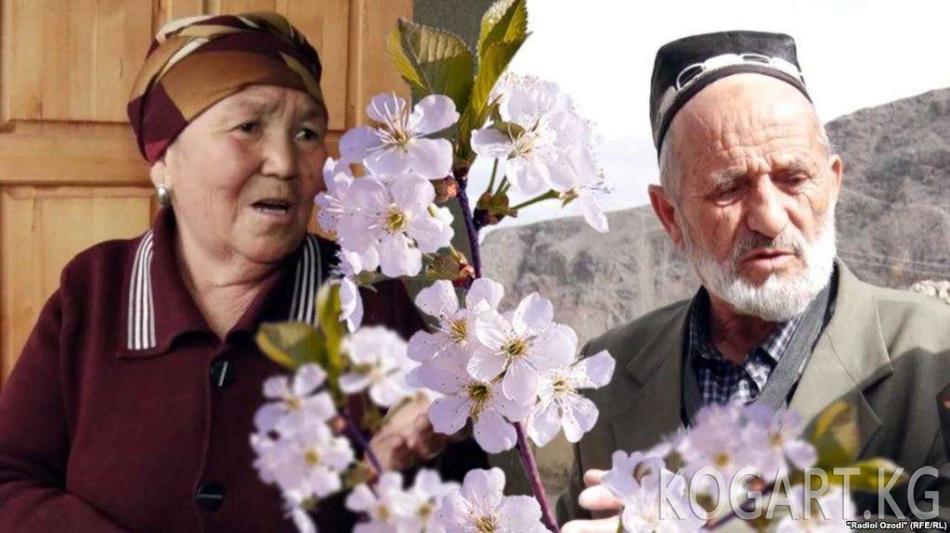 Кыргыз-тажик чек арасындагы элдин маанайы