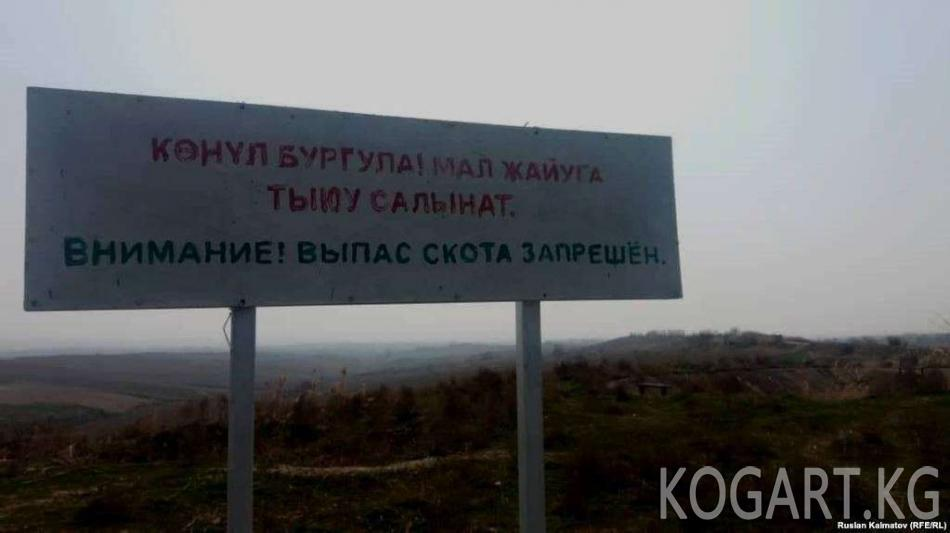 Аксылыктар чек арадагы жердин бир бөлүгүнүн Өзбекстанга берилишине...