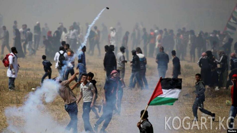 Газа сектору менен Израилдин чек арасында 50 палестиналык жаракат алды