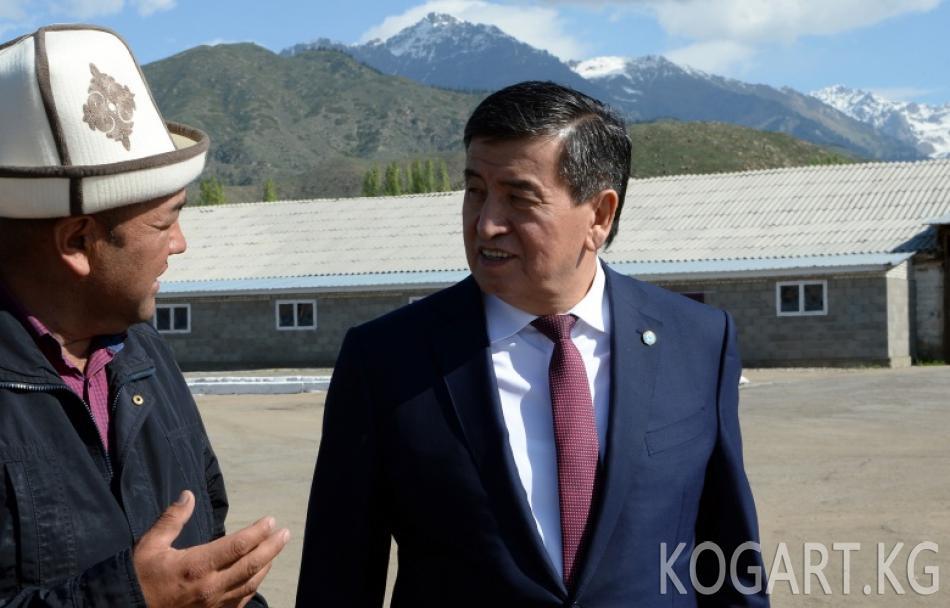 Президент Сооронбай Жээнбеков Ысык-Көл районундагы сүт өндүрүү...