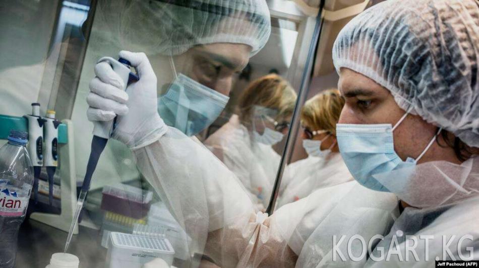 Өзбекстанда адамдын жетиле элек клеткаларын сактоочу банк түзүлөт