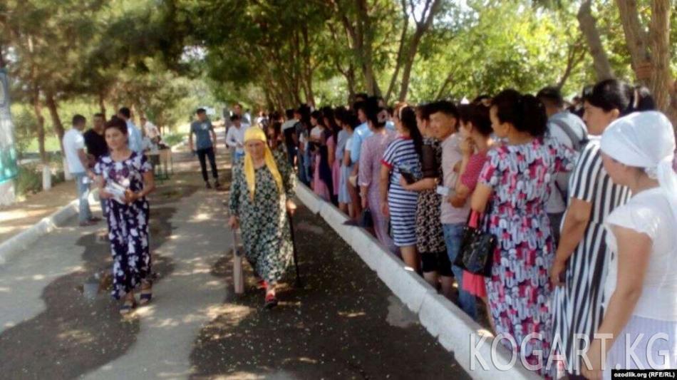 Өзбекстанда жогорку окуу жайларга документ тапшыруу үзгүлтүккө...