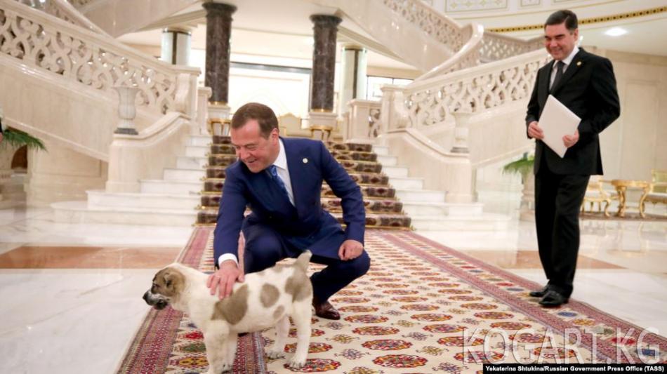 Медведев Түркмөнстанга барат