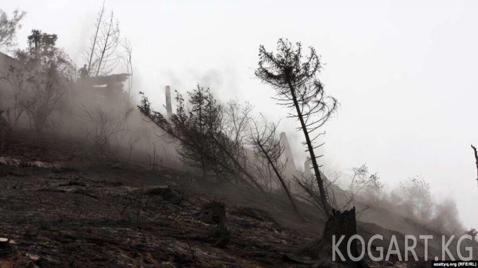 Казакстандын борбордук бөлүгүндөгү өрт аймагы беш эсеге жайылды