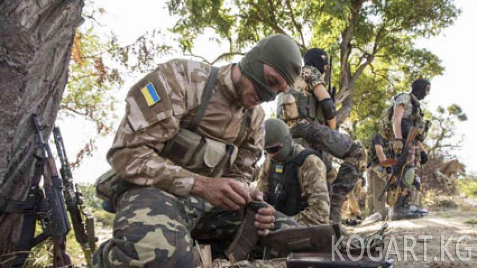 Киев: Донбасста эки орус жоокери туткунга алынды