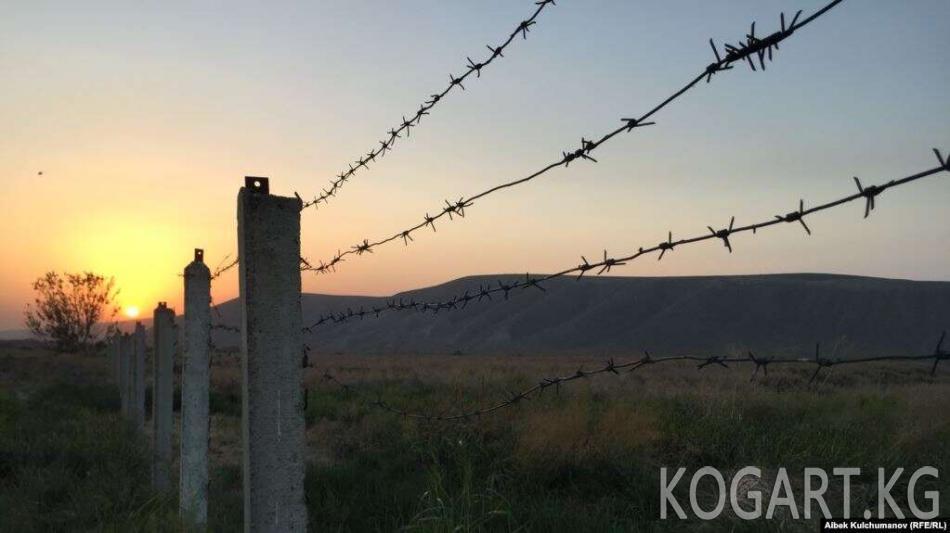 Өзбек чек арачылары кыргызстандыктардын мал-жандыктарын кайтарып...