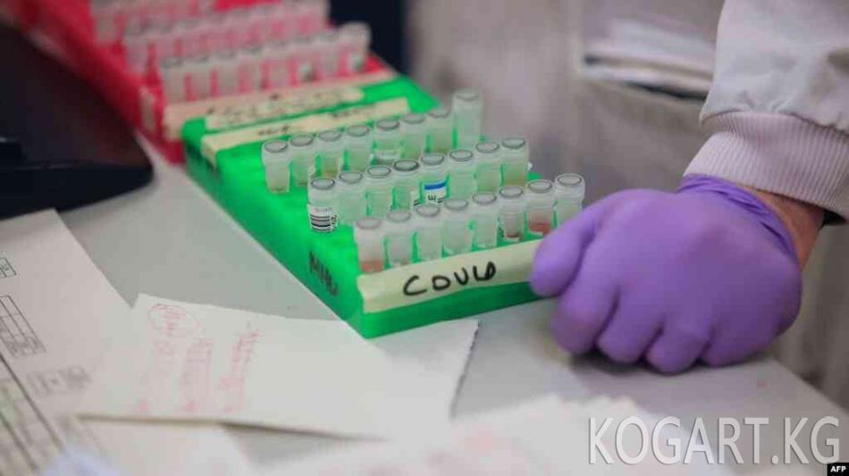 Өзбекстан коронавирус аныктай турган тест-система иштеп чыкты