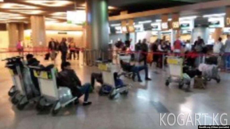 Өзбекстанда бардык аэропорттор ишин токтотту