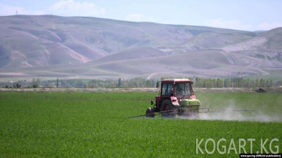 АӨБ: Пандемия шартында Кыргызстандын ички дүң өнүмү 4% өсөт