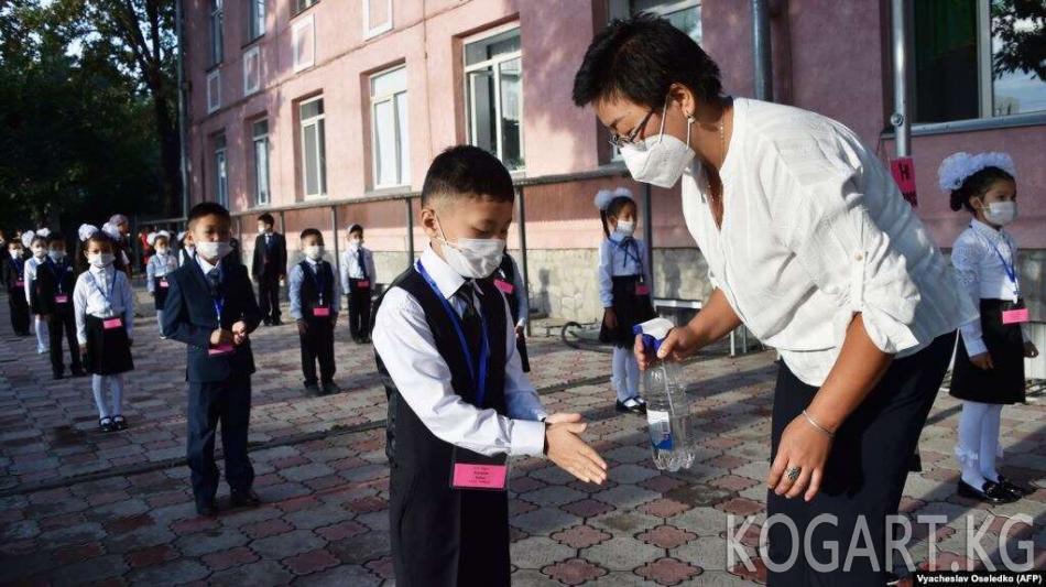 Казакстанда жаңы окуу жылы башталгандан бери 104 окуучуга COVID-19 жукту
