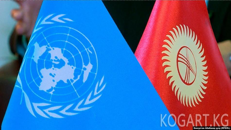 ТИМ БУУга Кыргызстандын алыскы 1000 айылын колдоону сунуштады