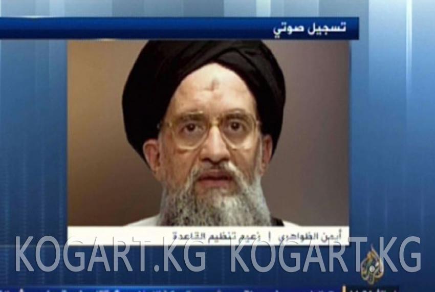 «Аль-Каида» талиптердин Кабул менен күрөшүн колдойт