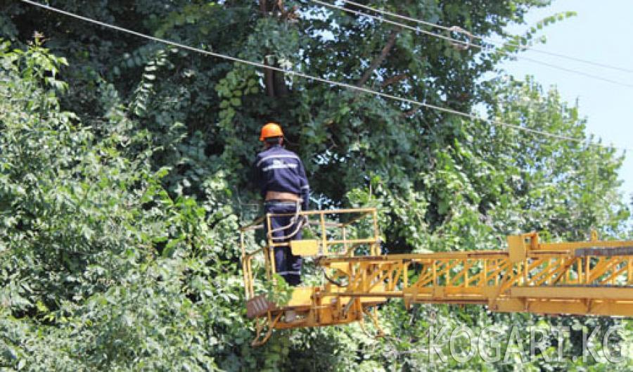 Ноокен районунун Бүргөндү айылына жаңы 18 даана электр мамычалар орнотулууда