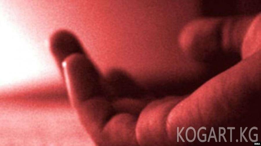 Ала-Букада келиндин өлүмү «Өзүн өлтүрүүгө жеткирүү» беренеси боюнча...